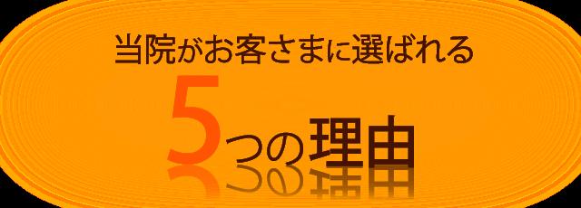 (見出し)選ばれる理由-5-orange